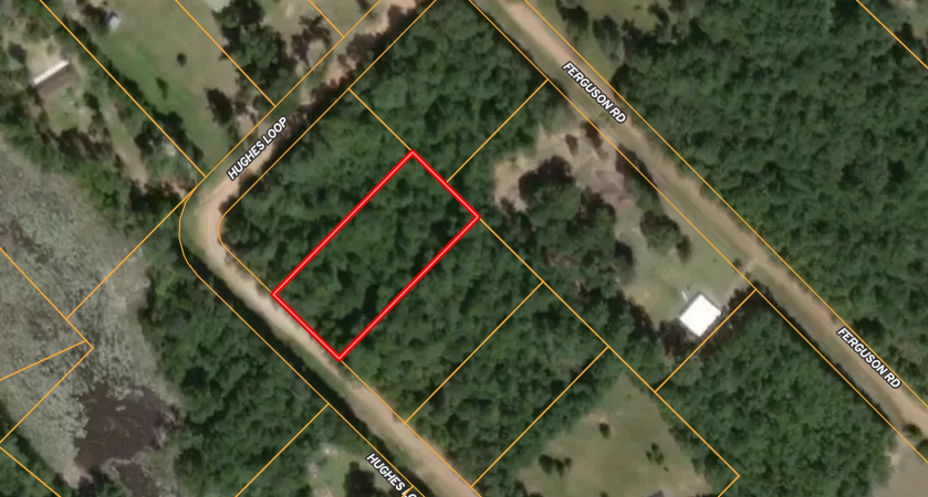 SAN JACINTO COUNTY  TEXAS LAND FOR SALE, DISCOUNTED $2,206.47 OFF OF MARKET!!!